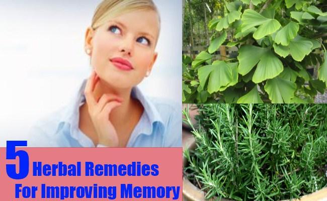 Herbal Remedies For Improving Memory